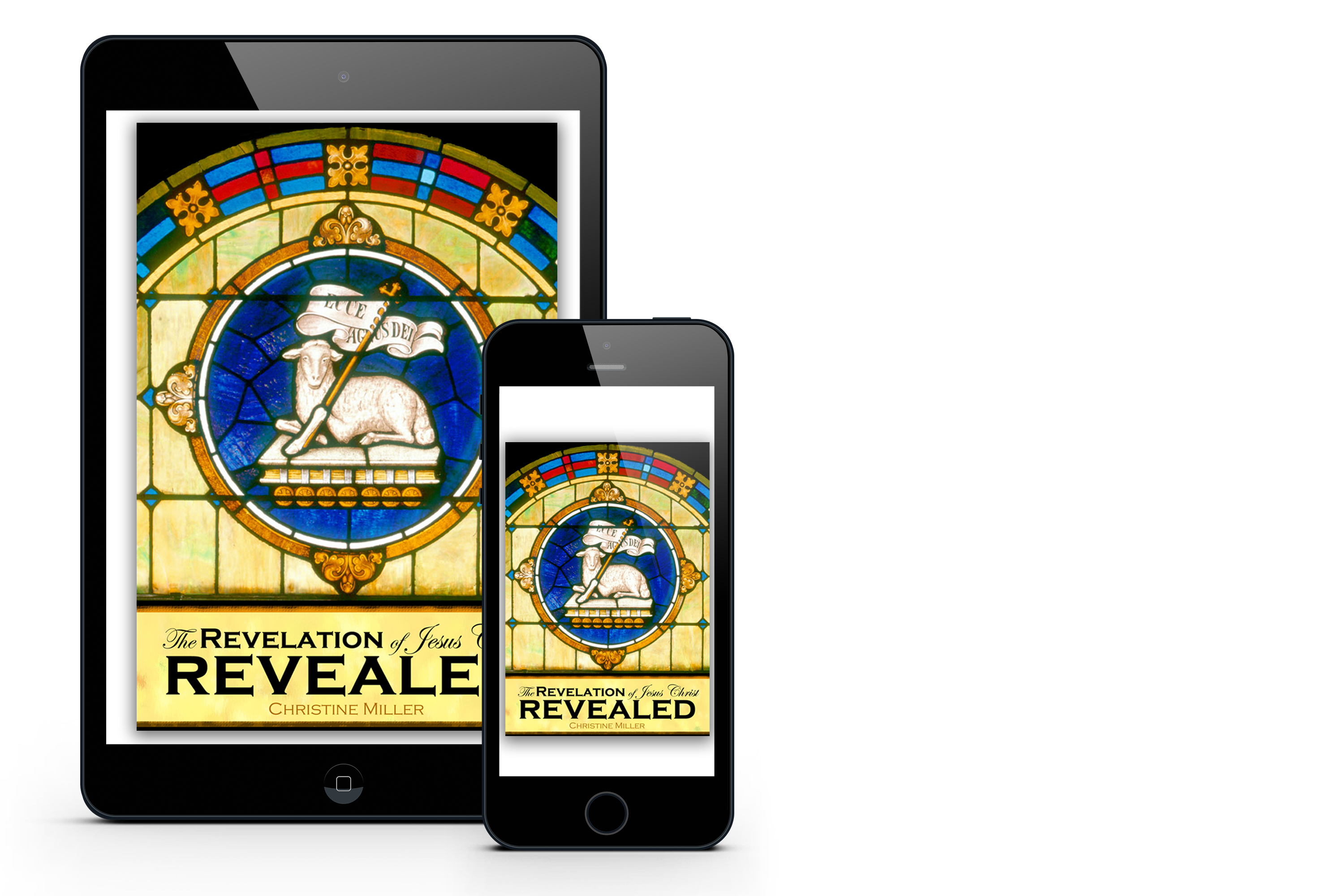 Revelation Revealed book available in print or ebook.